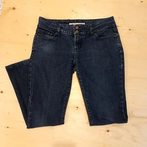 2 for $25- Brody Blue Boot Cut Jeans, Size 31